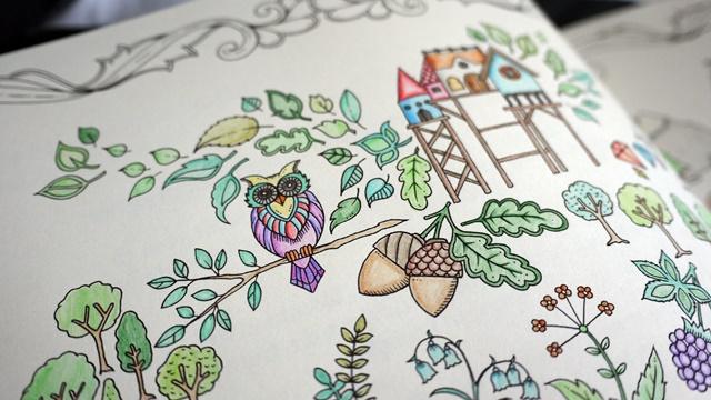 enchantedforrest